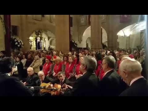 De la Misa a nuestra Patrona abril 2018 Ten Piedad