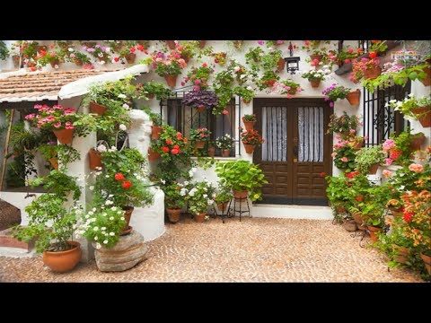 House and Garden - Cool Landscaping Ideas