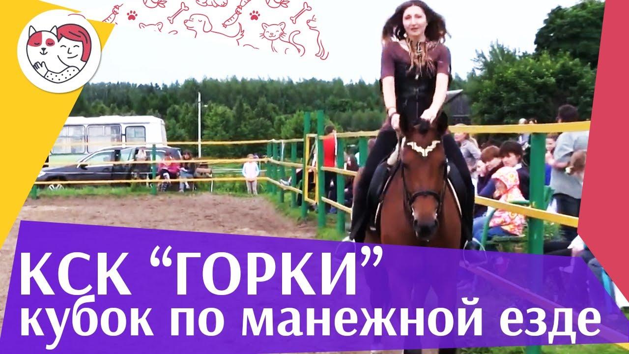 Летний кубок КСК Горки по манежной езде КЮР часть 7 на ilikepet