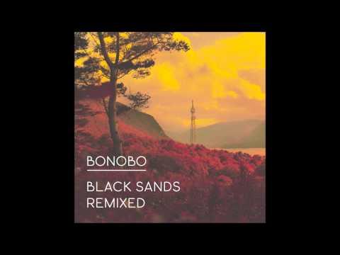 b4da49caa24593 All In Forms - Mike Slott Remix — Bonobo