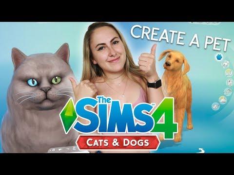Eerste gameplay Honden en Katten