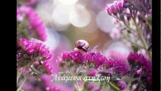 GIOVANNI MARRADI - This Little Big Love by Elen Beaute !!!!ღ¸.♥´´¯`♥!!!!