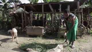 After genocide: rebuilding Rwanda | Women's economic empowerment | ActionAid UK