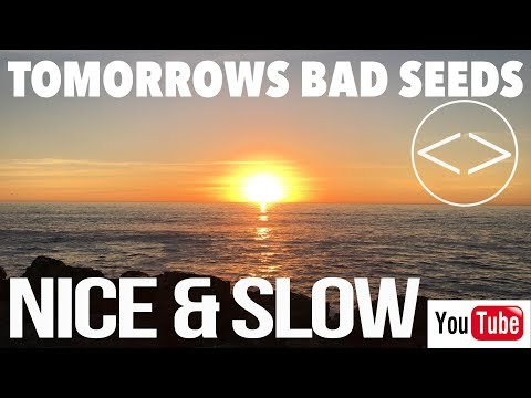"Tomorrows Bad Seeds- ""Nice & Slow"" (OFFICIAL VIDEO)"