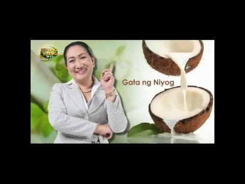 Ginintuang buhok recipe oil lola Agafia review