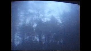 Kadr z teledysku Adios tekst piosenki PRO8L3M