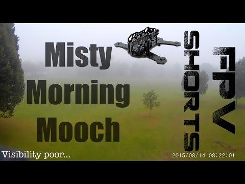 misty-morning-mooching--fpv-shorts