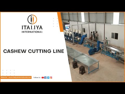 Industry Cashew Cutting Line