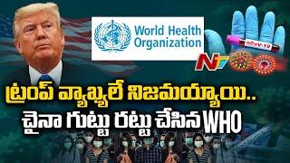 కరోనాని సృష్టించింది చైనా యే ! - WHO Sensational Announcement Over Coronavirus | NTV