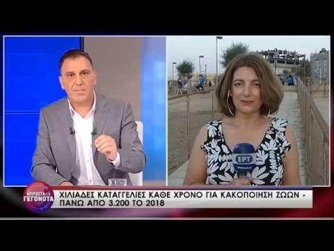Η Ε.Ηλιοπούλου και η E.Δέδε θίγουν το ζήτημα της κακοποίησης των ζώων| 20/06/2019 | ΕΡΤ