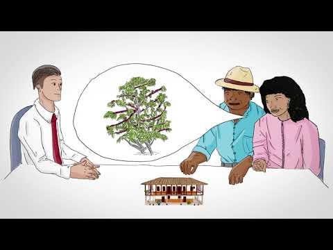 Vidéo Youtube - Proyecto PASAC : Protocolo de atención