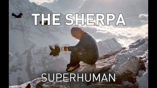 Real life X-men: The superhuman physiology of the Sherpa