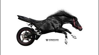 Why vehicle power is measured in Horse Power HP | Hindi