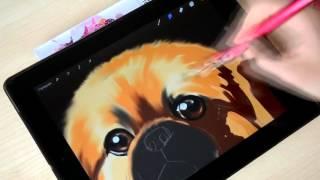 Обзор электронной кисти Silstar BuTouch для айпада + Как нарисовать собаку Пекинеса 1