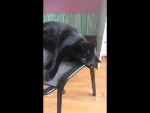 Masaż stóp wideo z koślawego