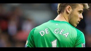 David De Gea Vs Hull City Home ● Individual Highlights 29112014 HD
