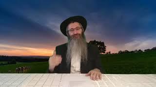 """וידאו - כיצד ביקש אברהם משרה """"וייטב לי בעבורך""""?!"""