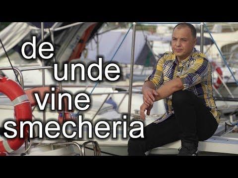 Dj Sebi – De unde vine smecheria [De La Noi Din Romania] Video
