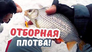 Ловля рыбы на гвоздекубик зимой