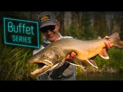 Buffet Series - 10 Fly Fishing Adventure Films