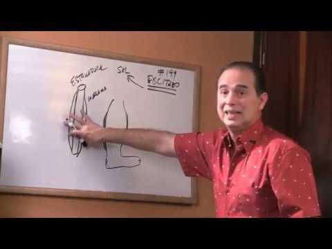 Varicosity delle estremità più basse e il trattamento