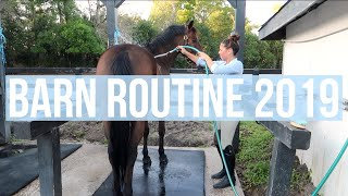 Barn Routine 2019 College Edition! | Equestrian Prep