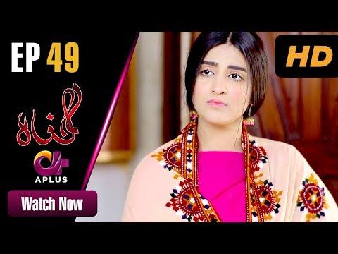 Pakistani Drama   Gunnah - Episode 49   Aplus Dramas   Sara Elahi, Shamoon Abbasi, Asad Malik