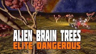 Elite Dangerous - Alien Brain Trees and the Formidine Delta Base