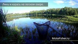 Места для рыбалки в витебской области