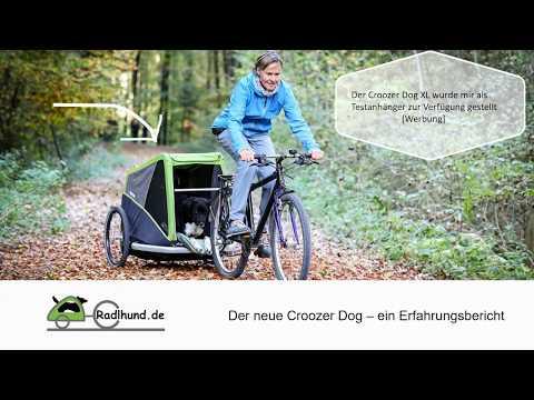 Der neue Croozer Dog Hundeanhänger im Test