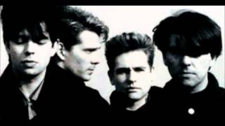 Echo And The Bunnymen - Ripeness
