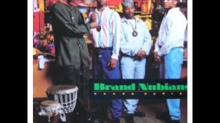 Brand Nubian / Feels So Good (INST) 1989