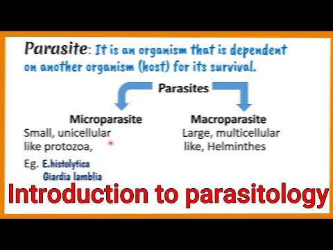 Oregamax paraziták