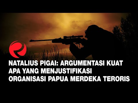 Natalius Pigai: Argumentasi Kuat Apa Yang Menjustifikasi Organisasi Papua Merdeka Teroris