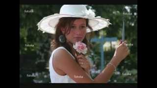 Adamo_ gute Reise schöne Rose