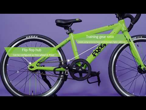 Frog Bikes | Track Bike in Detail
