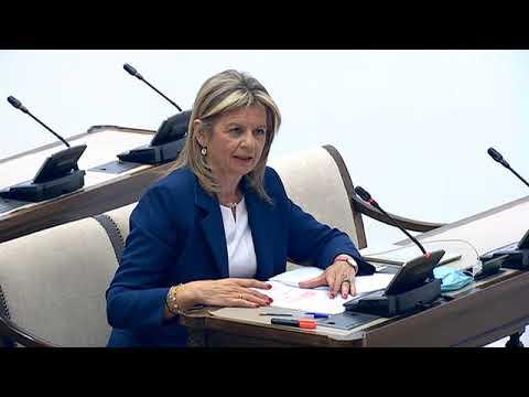 Elvira Velasco en el Grupo de Trabajo Sanidad y Salud Pública de la Comisión para la Reconstrucción