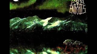 Bound By Entrails - Under The Midnight Sun