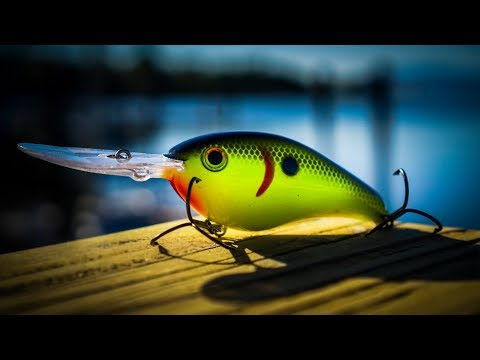 Advanced Bass Fishing Tips – How To Catch Entire Schools Of Fish!