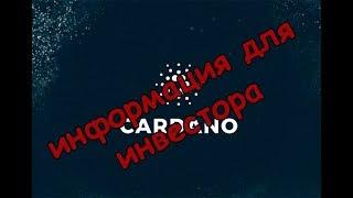 Полная информация для инвестора - монета Cardano