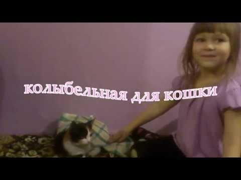 колыбельная для кошки