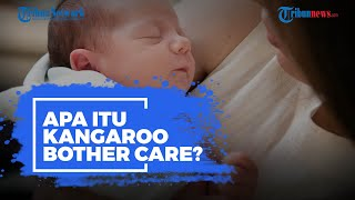 Apa Itu Kangaroo Mother Care?