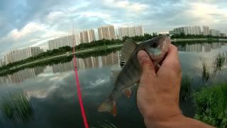 Рыбалка на москва-реке в марьино