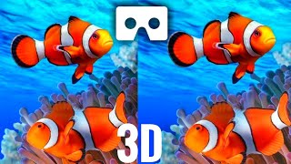 🔴 VR Videos 3D Aquarium VR Split Screen Relaxation 3D VR 4K for Google Cardboar VR BOX 3D not 360 VR