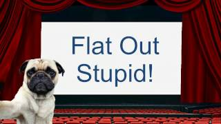 Flat Out Stupid: The Return of Russianvids