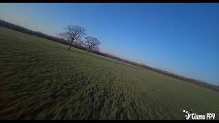 DJI FPV - All you need is 2 trees.