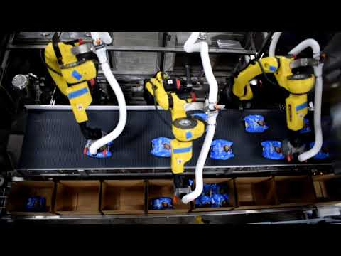 Empaque de cajas con Robot para productos cárnicos congelados