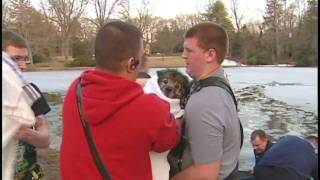 Dog rescued from icy pond [Delaware Online News Video]