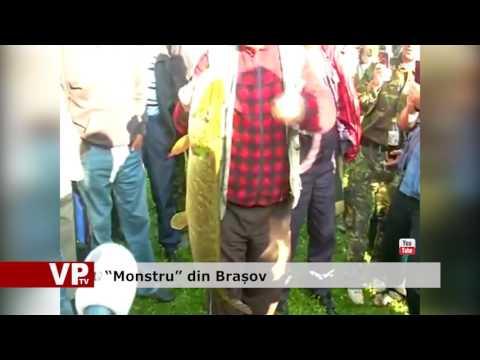 """Monstru"" din Brașov"