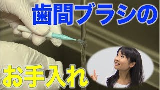 歯間ブラシのお手入れ方法